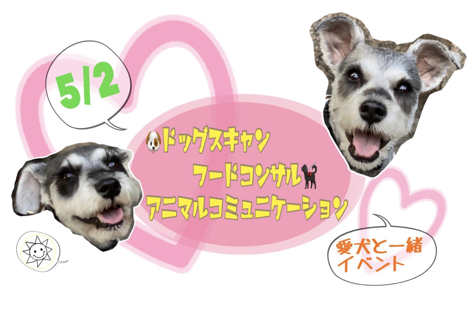 犬と一緒のイベント